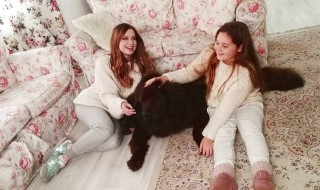 Наши щенки снимались в музыкальном клипе Юлии Савичевой!
